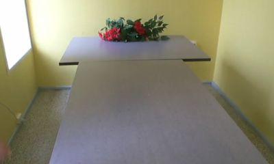 lemmikloomade krematoorium